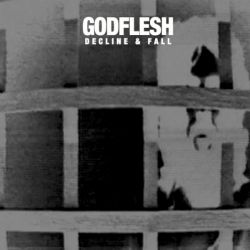 Godflesh—Decline and Fall