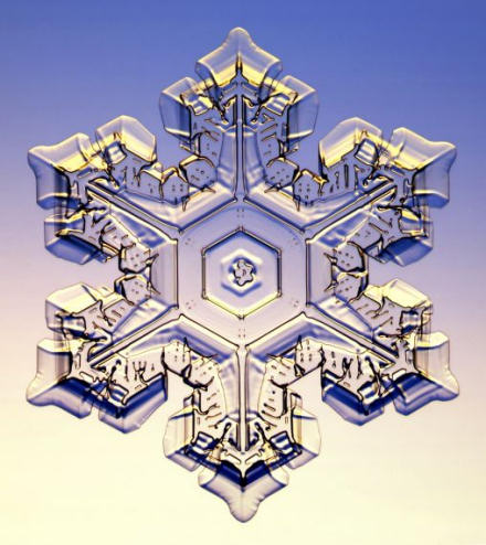 Photograph of a snow crystal