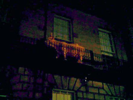 A cow on a balcony