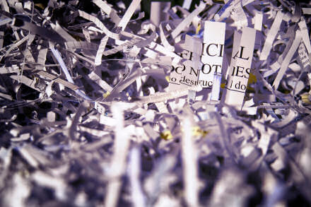 Close up photograph of shredded paper.