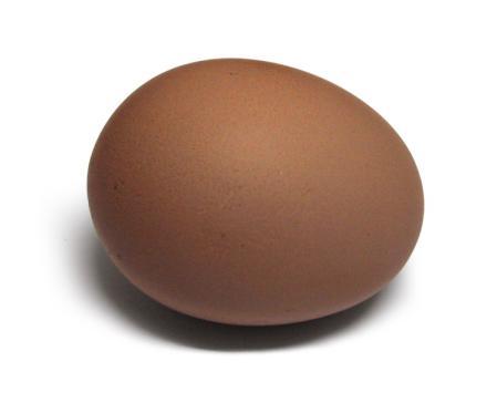 An egg.