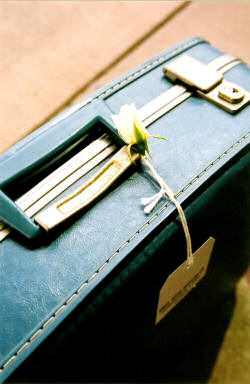 Suitcase, with a label hanging from the handle, and a white rose resting on top of it.