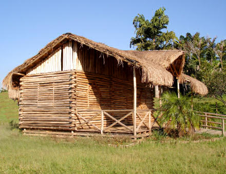 Lumber house with a grass roof