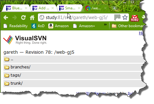 View of VisualSVN repository in a browser
