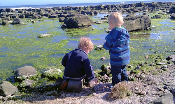 Reuben and Joshua throwing stones into a rock pool
